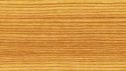 Horská borovice 50